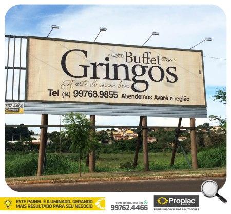 gringos_13_01_2016