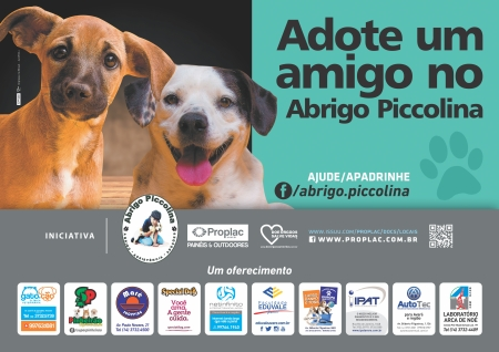 cartaz campanha adocao caes jun 2016